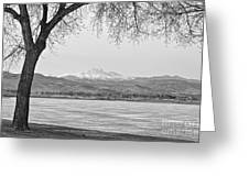 Longs Peak Winter View In Black And White Greeting Card