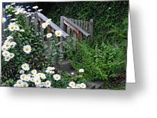 Look After The Daisies Greeting Card