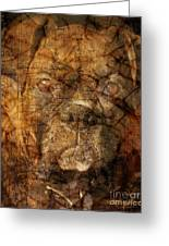 Look Into My Eyes Greeting Card by Judy Wood