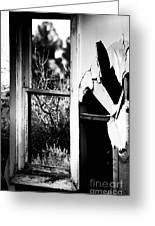 Look Out The Window There Beauty Is Greeting Card