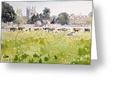 Looking Across Christ Church Meadows Greeting Card