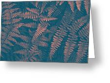 Looking At Ferns Another Way Greeting Card