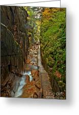 Looking Down Flume Gorge Greeting Card