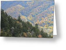 Looking Down On Autumn From The Top Of Smoky Mountains Greeting Card