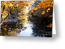 Looking Down The Eno River Greeting Card