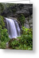 Looking Glass Falls Greeting Card by Bob Jackson