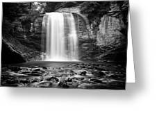 Looking Glass Falls Number 20 Greeting Card