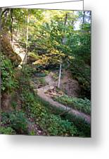 Looking Into Devil's Punch Bowl Wildcat Den Greeting Card