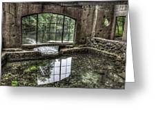 Looking Out 2 - Paradise Springs Spring House Interior  Greeting Card