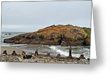 Looking Out On The Pacific Ocean From The Sutro Bath Ruins In San Francisco  Greeting Card