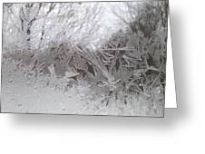 Looking Through The Frost Iv Greeting Card