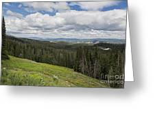 Looking To The Canyon - Yellowstone Greeting Card