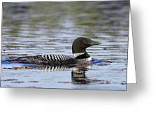 Loon And Reflection Greeting Card