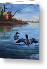 Loon Dance II Greeting Card