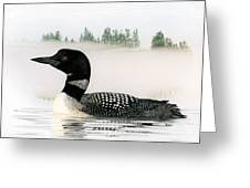 Loon In Fog Greeting Card by Brent Ander