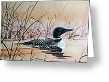 Loon Sunset Greeting Card