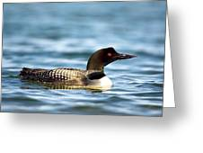 Loons 7 Greeting Card