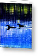 Loons In Pittsburg Greeting Card by Will Boutin Photos