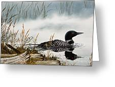 Loons Misty Shore Greeting Card