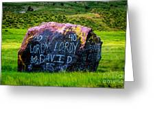 Lordy Lordy Greeting Card by Jon Burch Photography