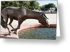 Los Colinas Mustangs 14687 Greeting Card