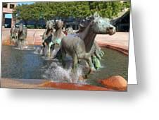 Los Colinas Mustangs 14710 Greeting Card