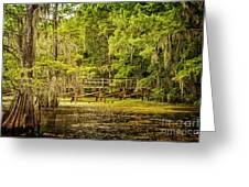 Lost Bridge On Caddo Lake Greeting Card