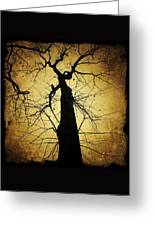 Lost In The Forest I Broke Off A Dark Twig And Lifted Its Whisper To My Thirsty Lips Greeting Card