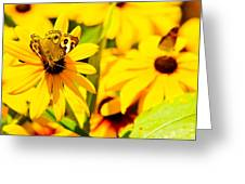 Lost In Yellow Greeting Card