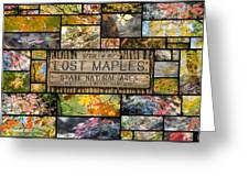 Lost Maples Collage Greeting Card