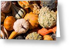 Lots Of Little Gourds Greeting Card