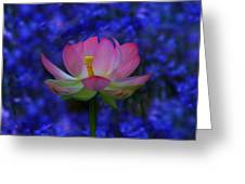 Lotus Flower In Blue Greeting Card
