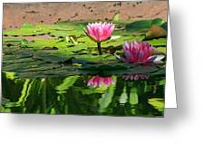 Lotus Flower Reflections Greeting Card
