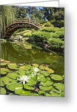 Lotus Garden - Japanese Garden At The Huntington Library. Greeting Card