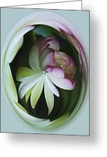 Lotus Mirror Greeting Card