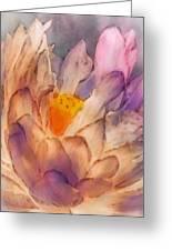 Lotus Watercolor Greeting Card by Jill Balsam