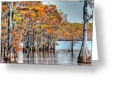 Louisiana Autumn Greeting Card