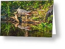 Louisiana Bayou 2 - Paint Greeting Card