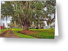 Louisiana Country Greeting Card