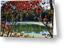 Louisiana Fall Greeting Card