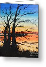 Louisiana Lacassine Nwr Treescape Greeting Card