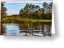 Louisiana Lake Greeting Card