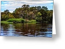 Louisiana Lake II Greeting Card