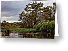 Louisiana Landscape Greeting Card