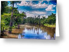 Louisiana Swamp Greeting Card by Tammy Smith