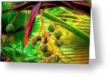 Loulu Palm Greeting Card