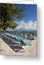 Lounge Chairs On The Beach Greeting Card by Amy Cicconi