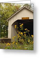 Loux Bridge And Tickseed In September Greeting Card