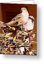 Love Birds II Greeting Card