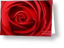 Love Curves Greeting Card